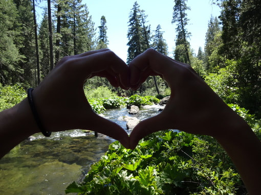 Heart Hands over Creek Pamela Llano